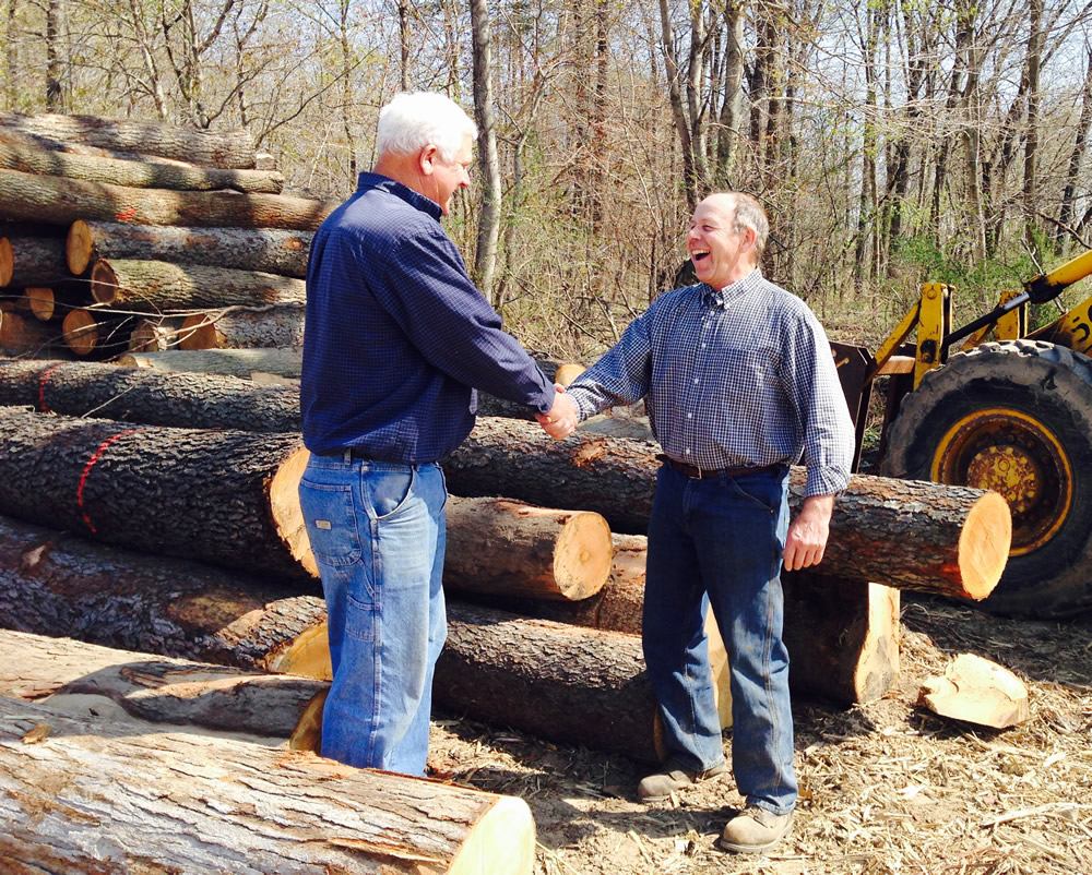 southwest Michigan timber buyer