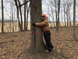 Gotta love a great tree!